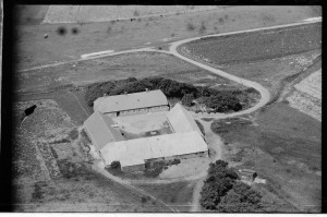 Dalgård 1947